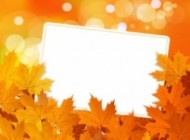 mini beautiful maple leaf background 02 vector 181754 190x140 in  | Grapheez